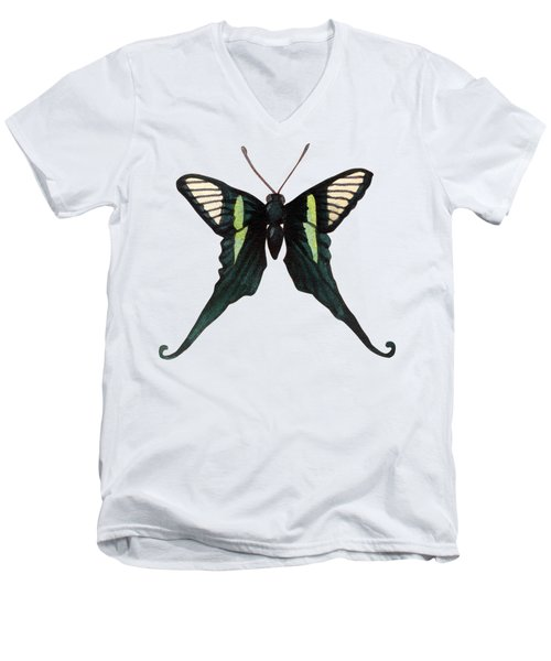 Men's V-Neck T-Shirt featuring the painting Winged Jewels 3, Watercolor Tropical Butterfly With Curled Wing Tips by Audrey Jeanne Roberts