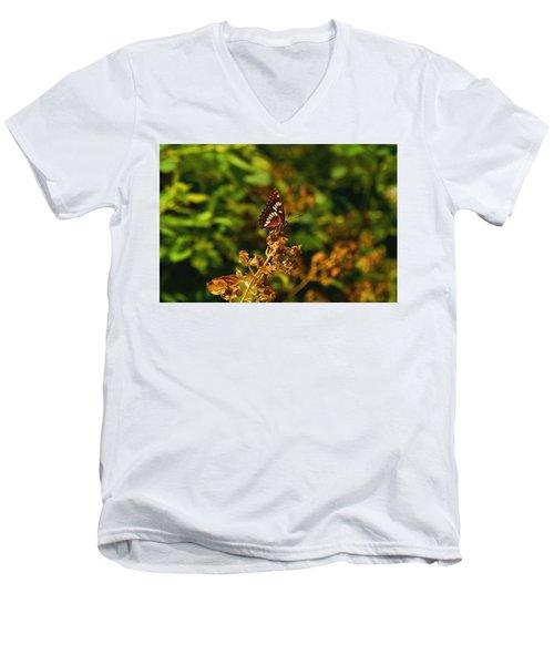 Wingo Butterfly Men's V-Neck T-Shirt