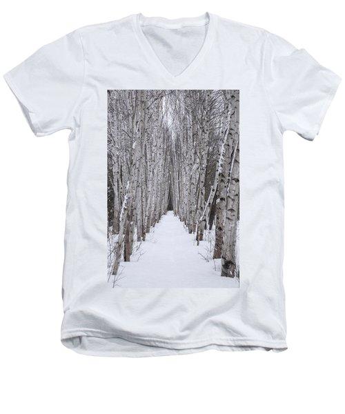 Winter Birch Path Men's V-Neck T-Shirt