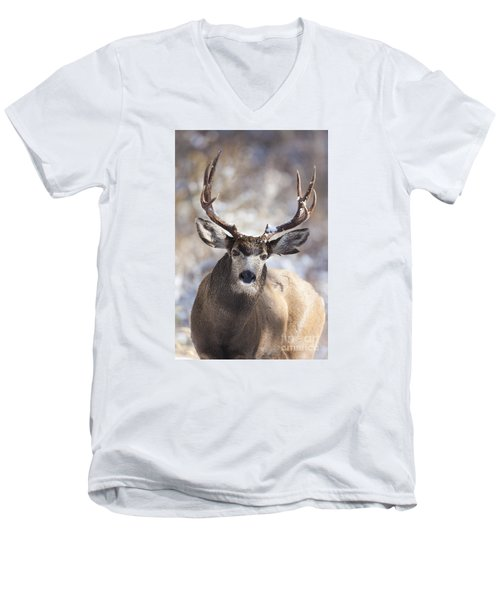 Winter Buck II Men's V-Neck T-Shirt