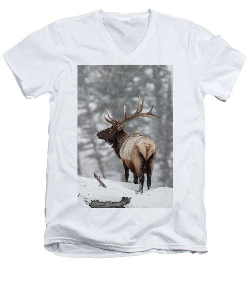 Winter Bull Elk Men's V-Neck T-Shirt