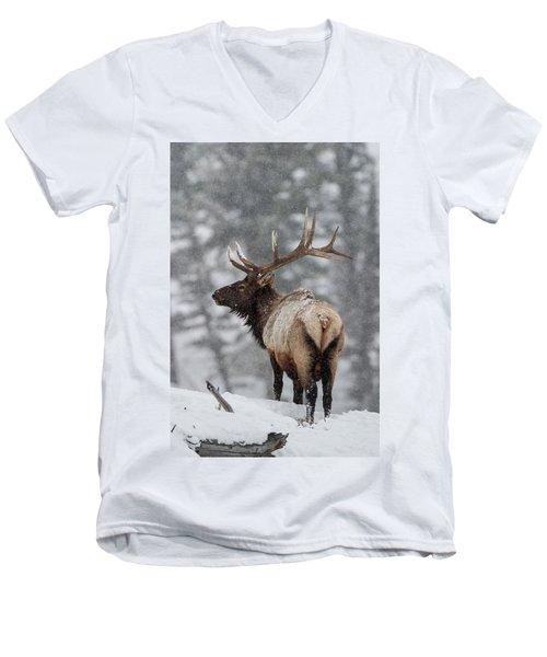 Winter Bull Elk Men's V-Neck T-Shirt