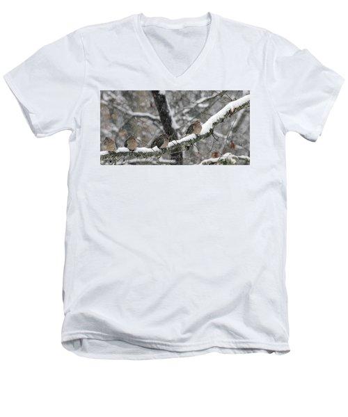 Winter Doves Men's V-Neck T-Shirt by Diane Giurco