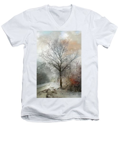 Winter Magic Men's V-Neck T-Shirt