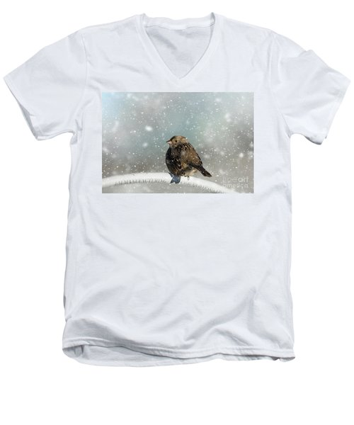 Winter Morning Men's V-Neck T-Shirt