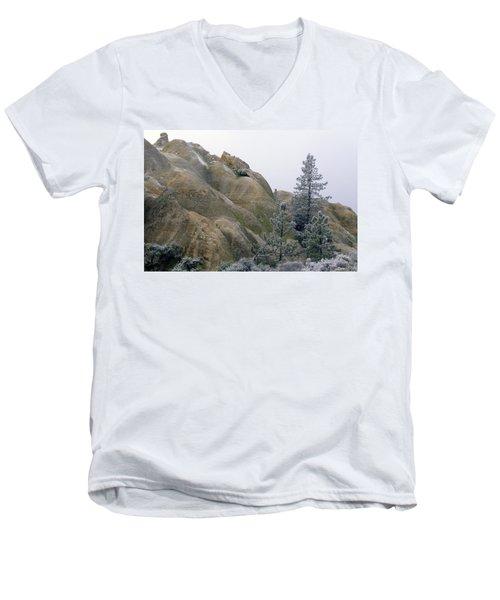 Winter Wind Men's V-Neck T-Shirt
