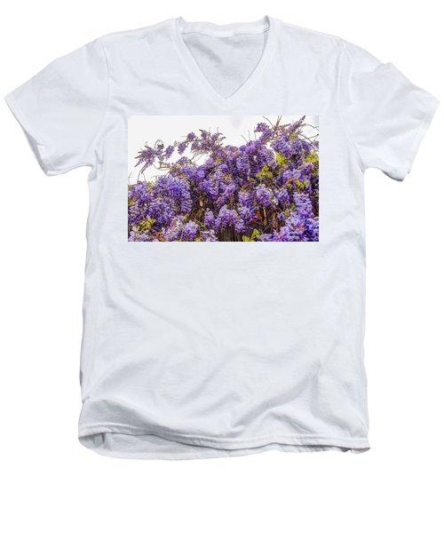 Wisteria Spring Bloom Men's V-Neck T-Shirt