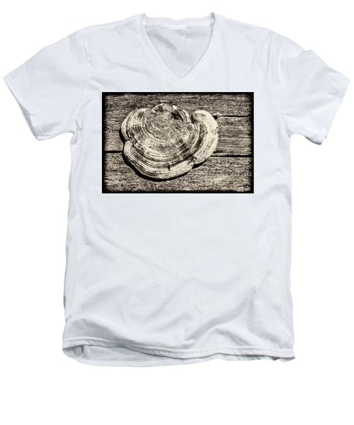 Men's V-Neck T-Shirt featuring the photograph Wood Decay Fungi, Nagzira, 2011 by Hitendra SINKAR