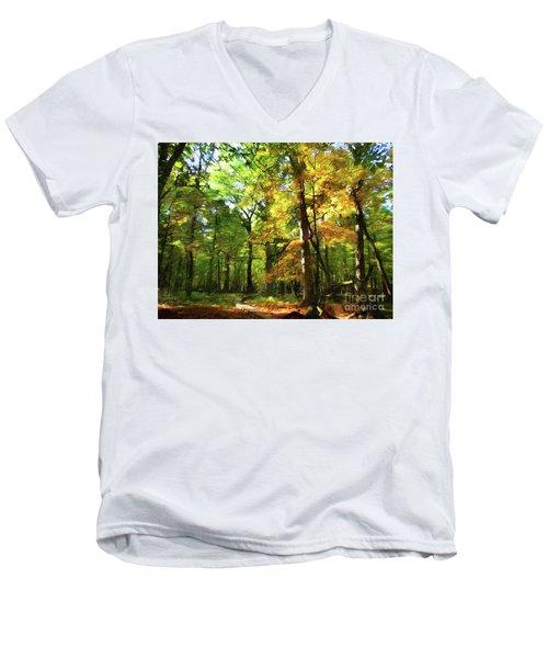 Wood Plank Trail Men's V-Neck T-Shirt