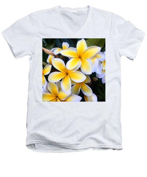 Yellow And White Plumeria Men's V-Neck T-Shirt