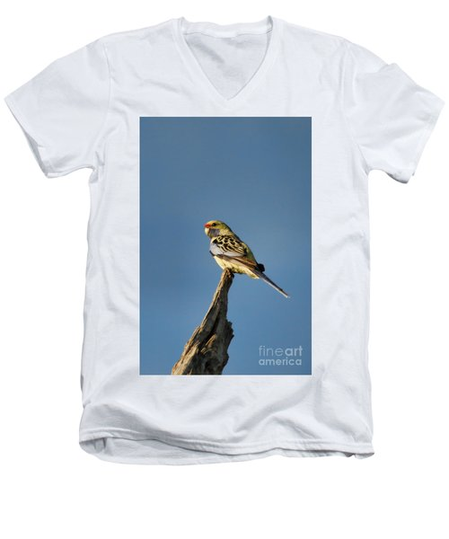 Men's V-Neck T-Shirt featuring the photograph Yellow Crimson Rosella by Douglas Barnard