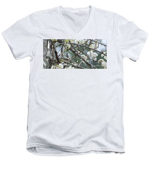 Yellow-rumped Warbler In Pear Tree Men's V-Neck T-Shirt