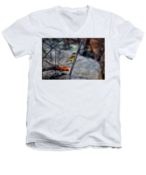 Yellow Warbler 2 Men's V-Neck T-Shirt