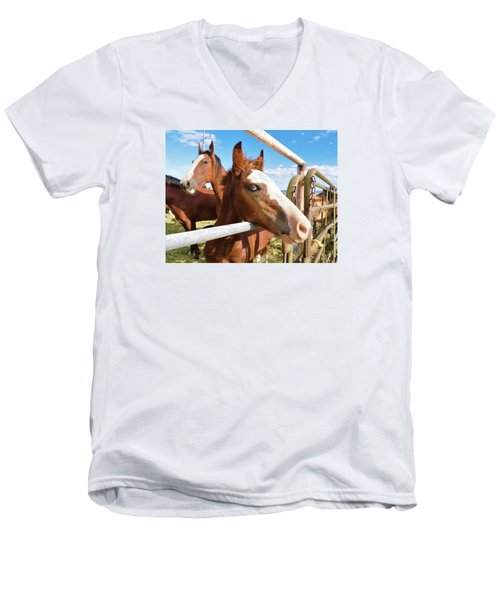 Young Blue Eyed Horse Men's V-Neck T-Shirt