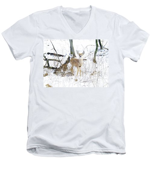 Young Doe And Spring Snow Men's V-Neck T-Shirt