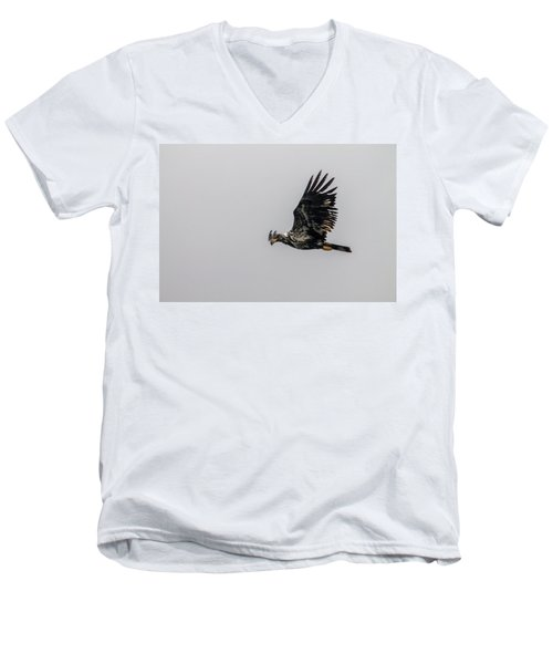 Men's V-Neck T-Shirt featuring the photograph Young Eagle In Flight 07 by Timothy Latta