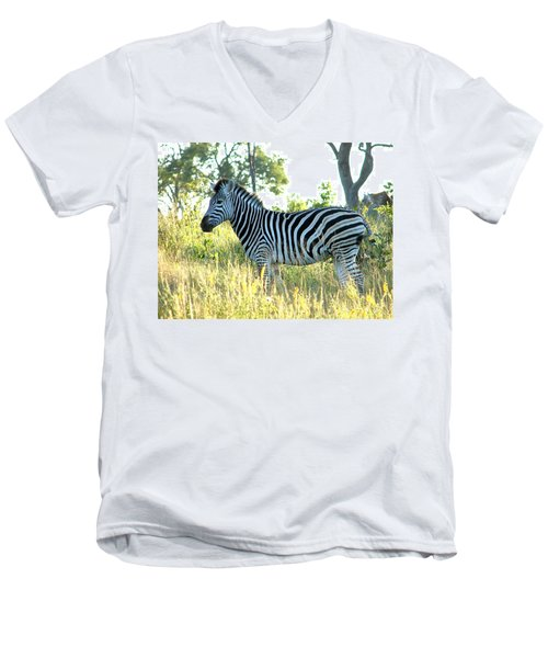 Young Zebra Men's V-Neck T-Shirt