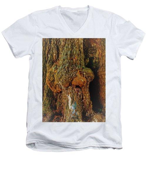 Z Z In A Tree Men's V-Neck T-Shirt