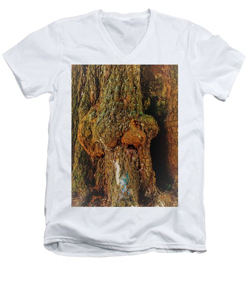 Z Z In A Tree Men's V-Neck T-Shirt