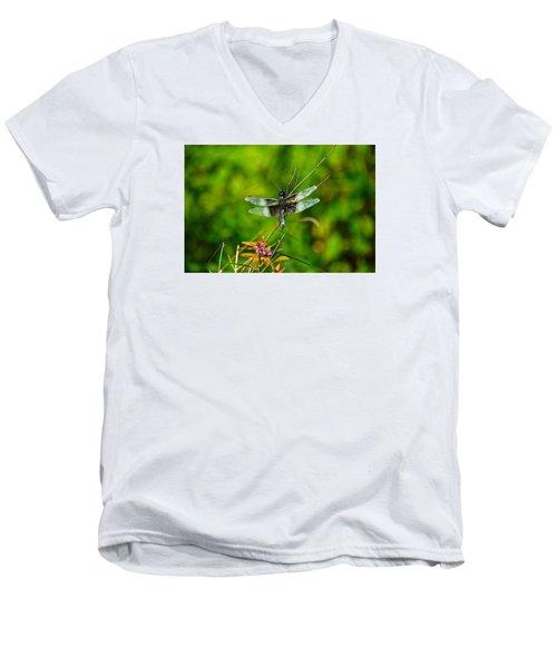 Zen Dragonfly 2 Men's V-Neck T-Shirt