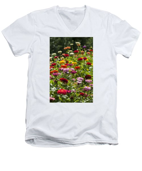 Zinniapaloosa Men's V-Neck T-Shirt