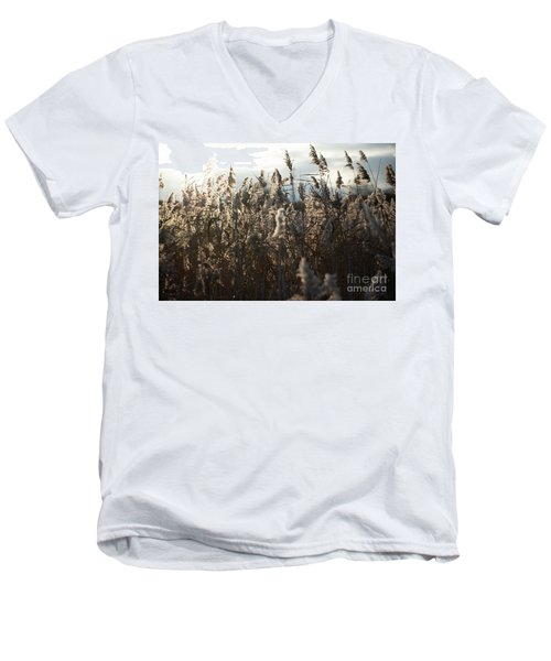 Fine Art Nature Men's V-Neck T-Shirt