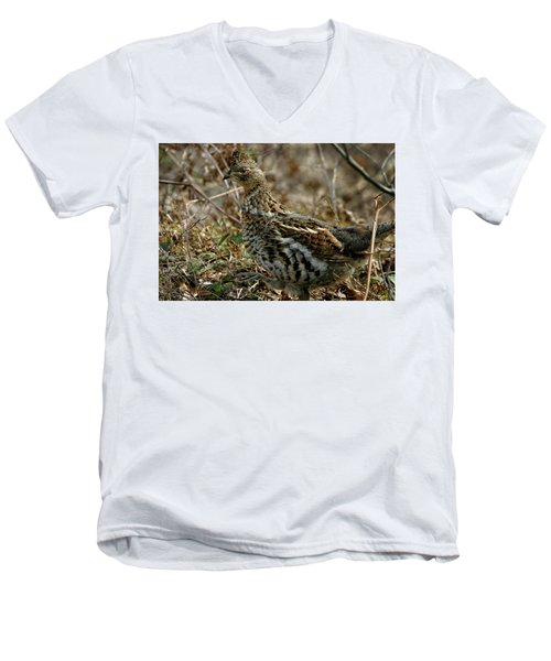 Ruffed Grouse 50702 Men's V-Neck T-Shirt