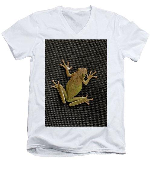 Tree Frog Men's V-Neck T-Shirt