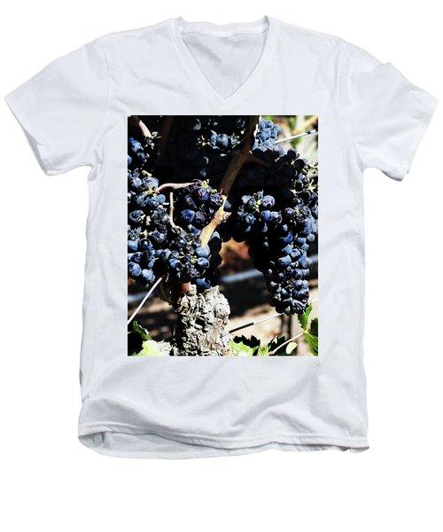 122918 Wine On The Vine Men's V-Neck T-Shirt