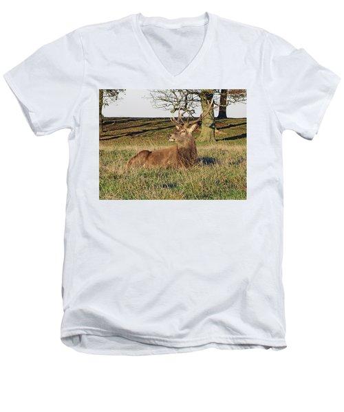28/11/18  Tatton Park. Stag In The Park. Men's V-Neck T-Shirt