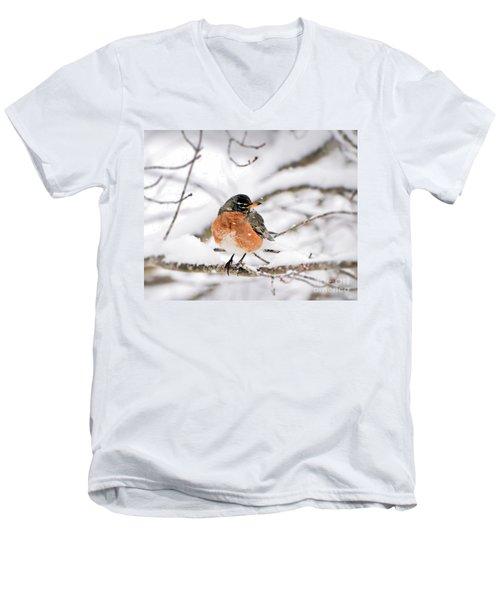 American Robin In The Snow Men's V-Neck T-Shirt