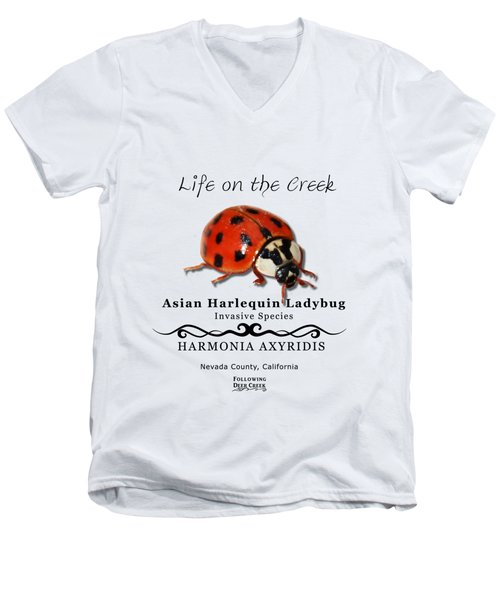 Asian Harlequin Ladybug Men's V-Neck T-Shirt