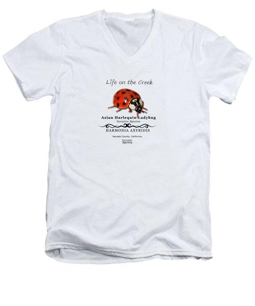 Asian Harlequin Ladybug Men's V-Neck T-Shirt