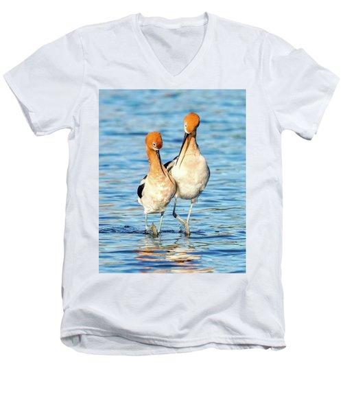 Avocet Dance Men's V-Neck T-Shirt