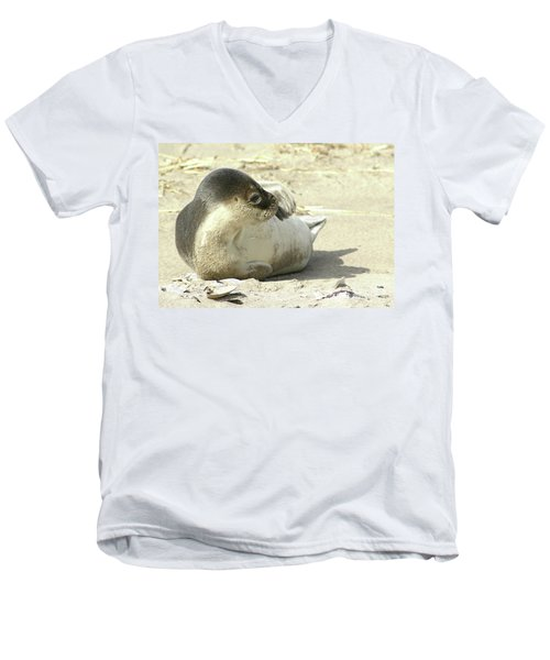 Beach Seal Men's V-Neck T-Shirt