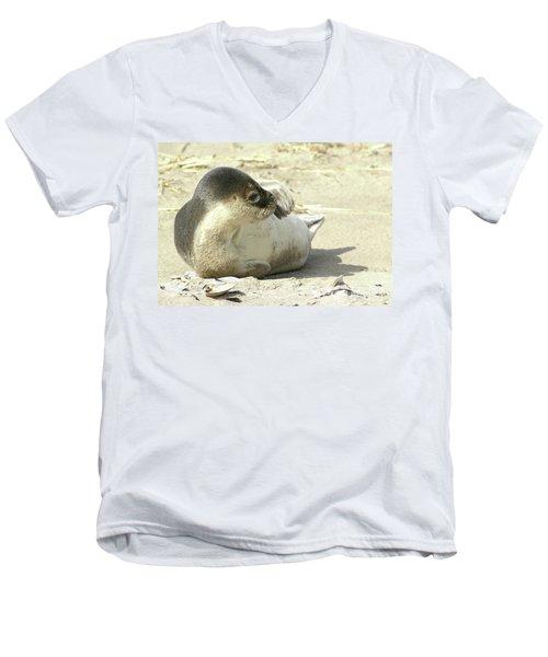 Beach Seal Men's V-Neck T-Shirt