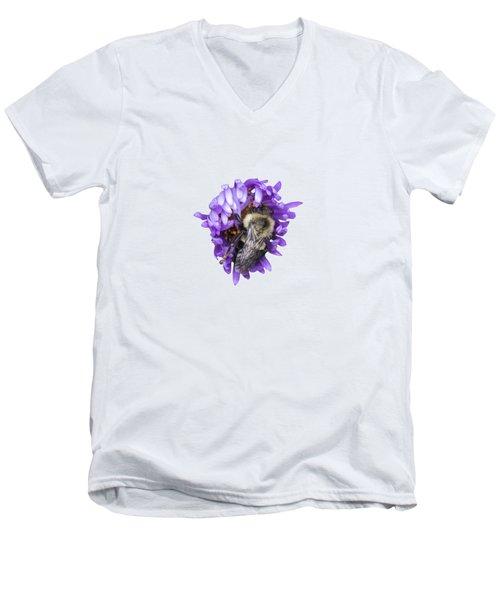 Bee 2018-1 Isolated Men's V-Neck T-Shirt