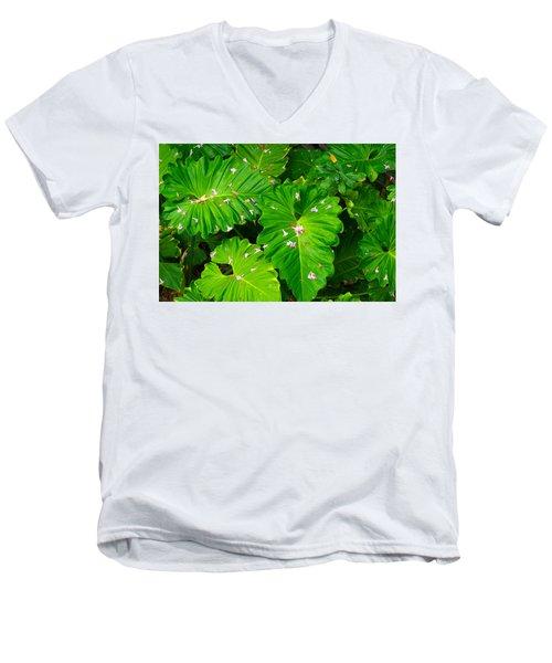 Big Green Leaves Men's V-Neck T-Shirt