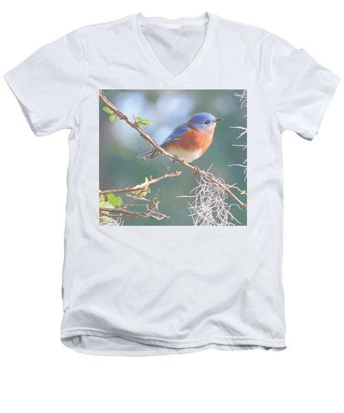 Bluebird In Dixie  Men's V-Neck T-Shirt
