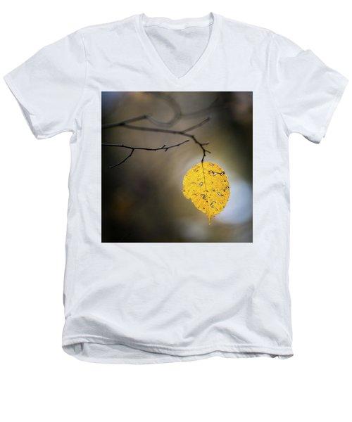Bright Fall Leaf 7 Men's V-Neck T-Shirt