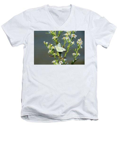 Cabbage White Butterfly On Flowers Men's V-Neck T-Shirt