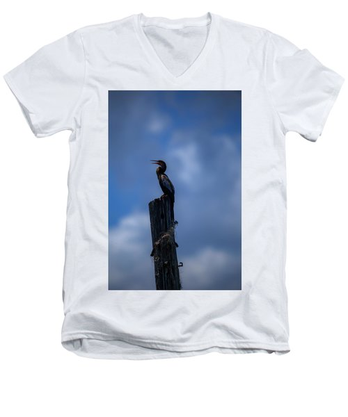 Cinematic Looking Anhinga Men's V-Neck T-Shirt
