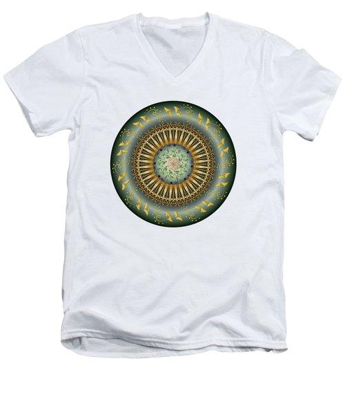 Circumplexical No 3675 Men's V-Neck T-Shirt