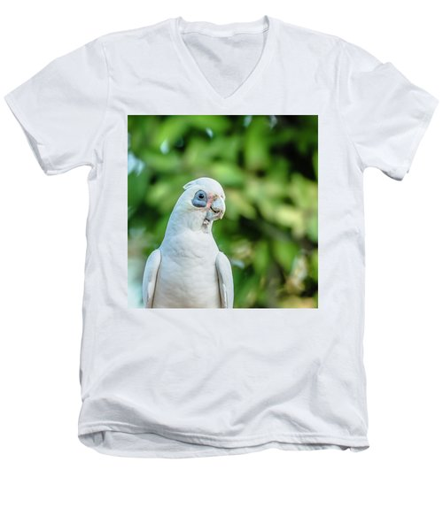 Corellas Outside During The Afternoon. Men's V-Neck T-Shirt