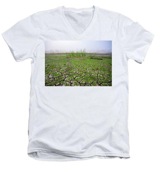 Dry Duck Pond Men's V-Neck T-Shirt