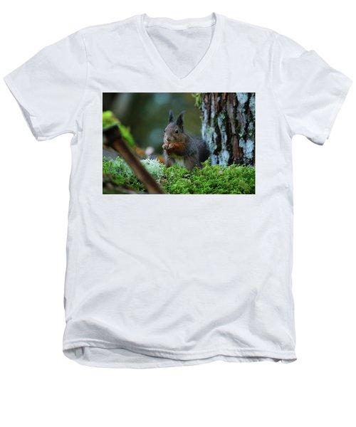 Eating Squirrel Men's V-Neck T-Shirt