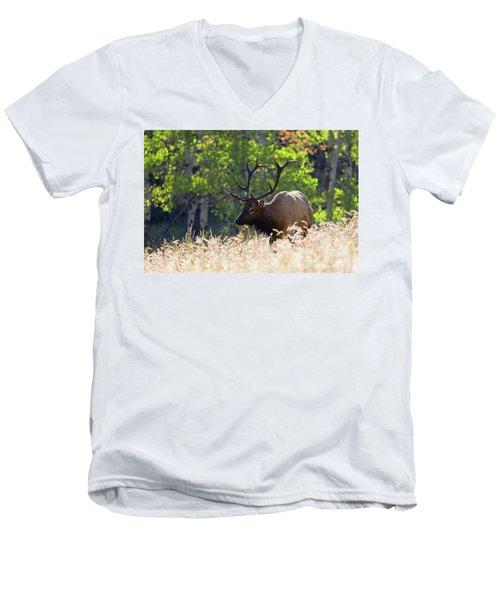 Fall Color Rocky Mountain Bull Elk Men's V-Neck T-Shirt