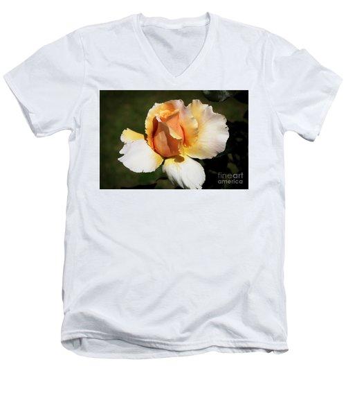 Fragrant Rose Men's V-Neck T-Shirt