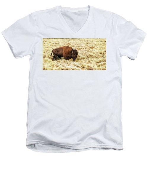 Roam Free Men's V-Neck T-Shirt