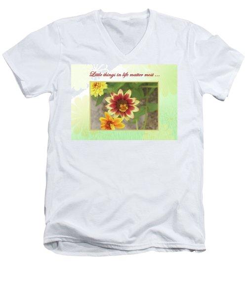 Friendship, A Smiling Indian Blanket Flower  Men's V-Neck T-Shirt